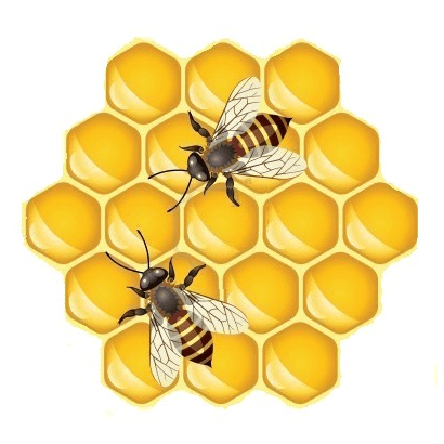 Cleveland Beekeepers Association