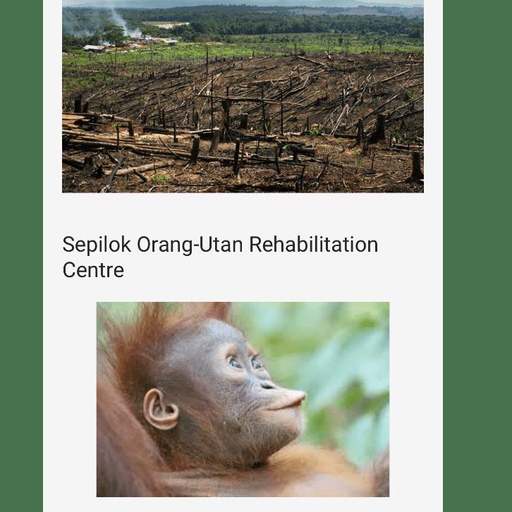 Borneo 2019 - Muhsin And Rayhaan Kola