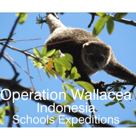 Operation Wallacea Indonesia 2020 - Charlie Windle