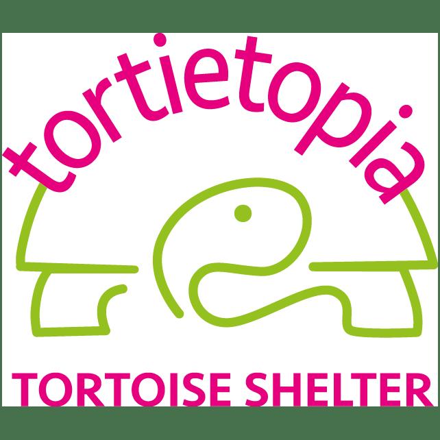 Tortietopia Tortoise Shelter