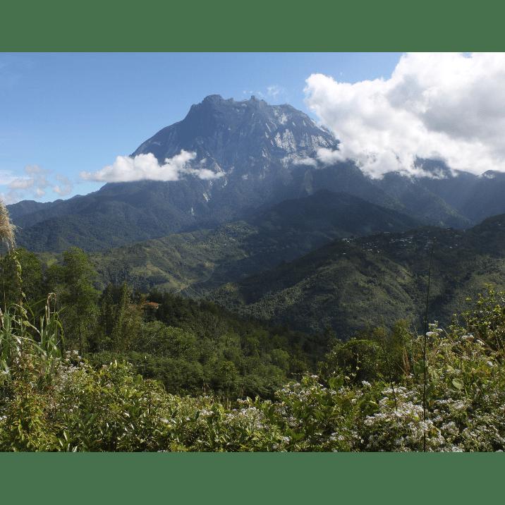 Borneo 2021 - Jamey Robson