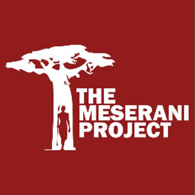 Meserani Project Kenya and Tanzania 2018 - Megan Loughran