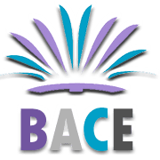 Bounce and Cheer Education (BACE)