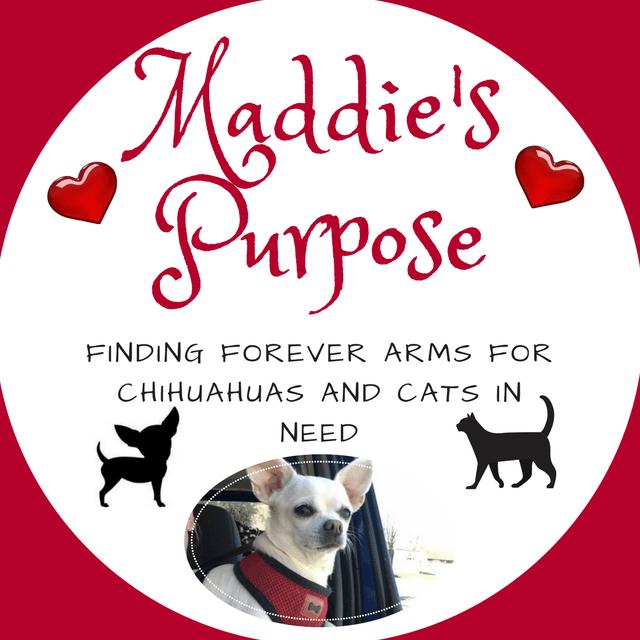 Maddie's Purpose Rescue