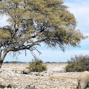 World Challenge Namibia - Keira and Cameron Berry