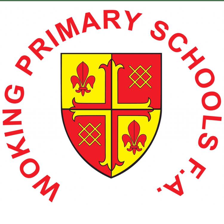 Woking Primary Schools Football Association