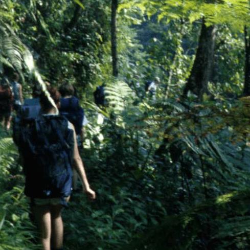 World challenge Borneo 2020 - Sorrel Sugg