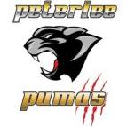 Peterlee Pumas ARLFC