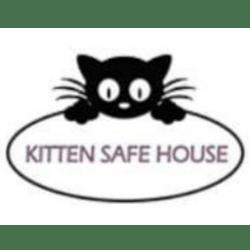 Gyvania Jovic-Storey raising for Kitten Safe House