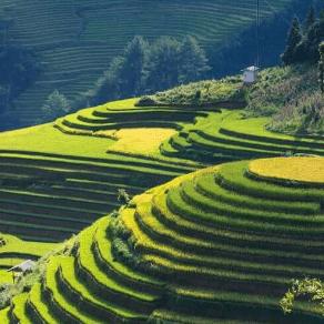 World Challenge Vietnam 2021 - Jonny Goddard
