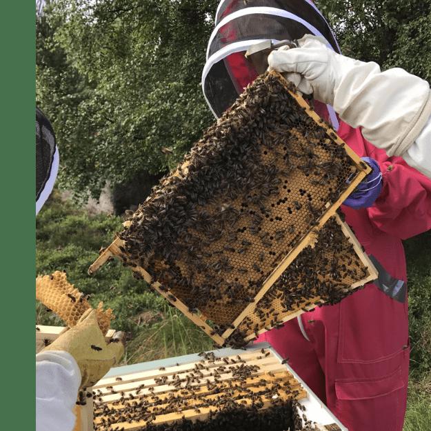 Spey Beekeepers Association