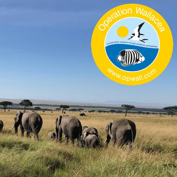 Operation Wallacea Africa 2021 - Katy Topple