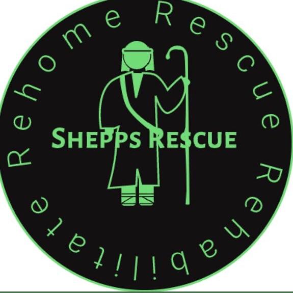 Shepps Rescue