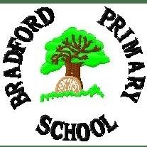 Friends of Bradford Primary School, Holsworthy