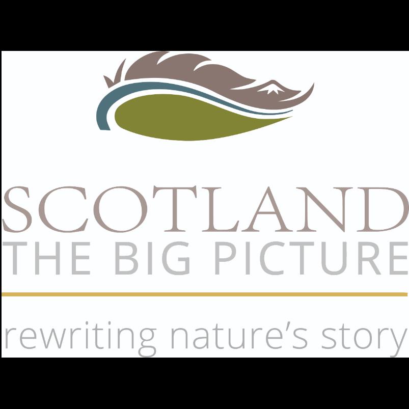 SCOTLAND The Big Picture