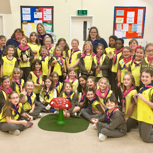 1st Brickhill Brownies