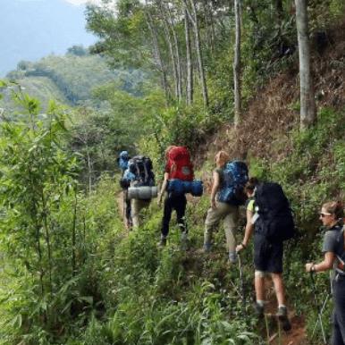 Borneo 2021 - Kyla Johnstone