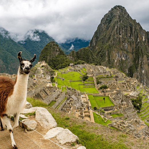 Camps  International Peru 2019 - Joseph Bickley