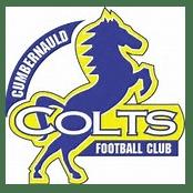Cumbernauld Colts FC 2008