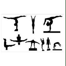 The Dynamic Gymnastics Foundation