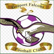 Gosport Falcons Football Club