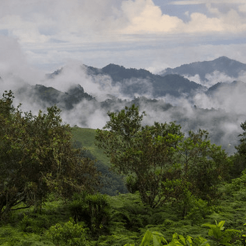 Operation Wallacea Honduras 2021 - Lauren Thomson