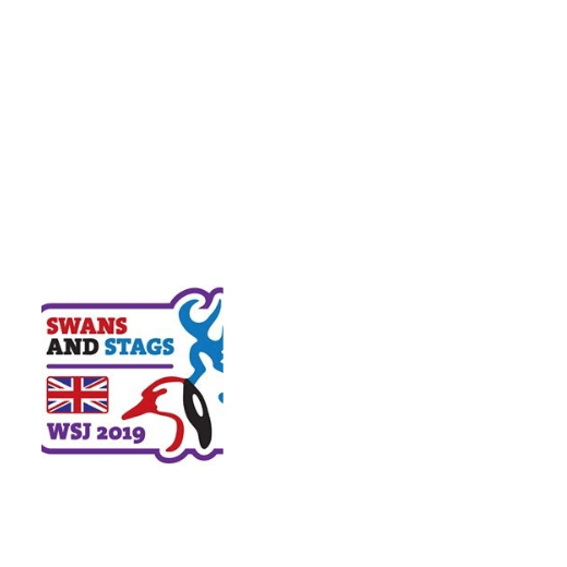 World Scout Jamboree West Virginia 2019 - Chiltern North Group