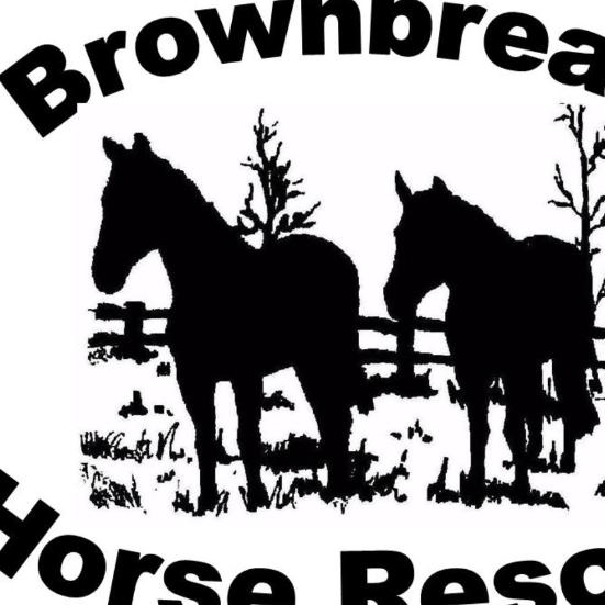 Brownbread Horse Rescue