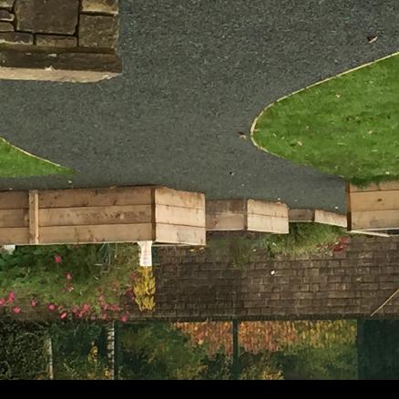 Townend Community Garden