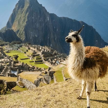 Peru 2019 - George Royden