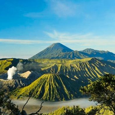 World Challenge Java Bali 2020 - Matthew Taylor
