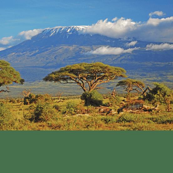 World Challenge Tanzania 2020 - Ellen Fairey