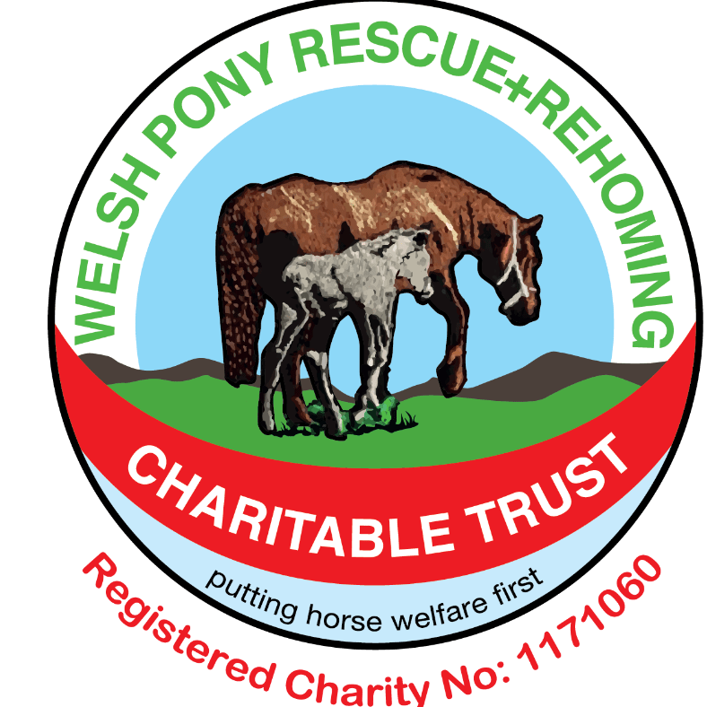 Welsh Pony Rescue Rehoming Charitable Trust