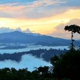 Borneo 2021 - Emly Holden