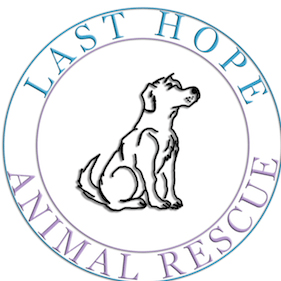 Last Hope Dog Rescue