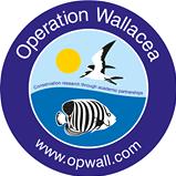 Operation Wallacea  Dominica 2019 - Georgie Nicholls
