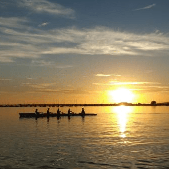 Dolphin Rowing Club