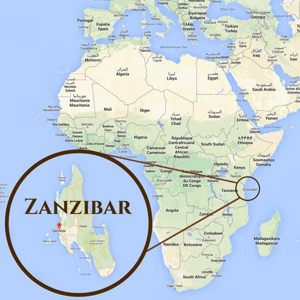 Global Action Zanzibar 2019 - Cameron Liddle