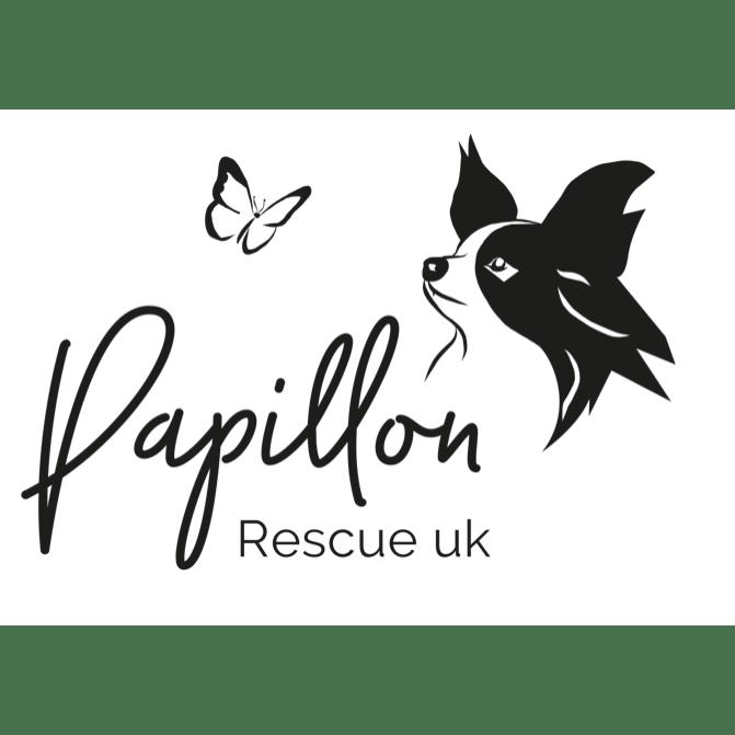 Papillon Rescue UK