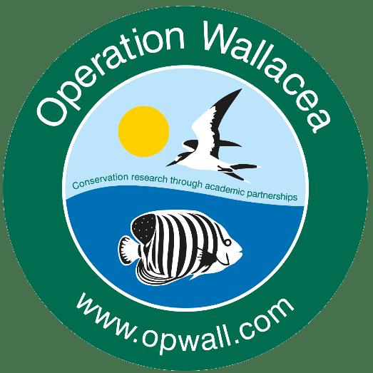 Operation Wallacea Mexico 2019 - Ella Davidson