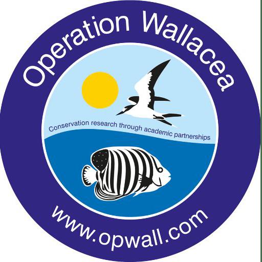 Operation Wallacea Mexico 2018 - Juliet Bourke