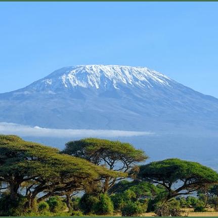 Dig Deep Mount Kilimanjaro 2019 - Harry Newton