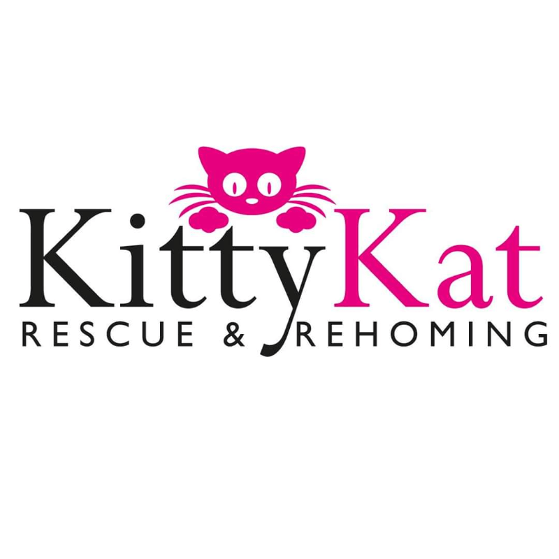 Kitty Kat Rescue & Rehoming Watford