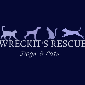 Wreckit's Rescue