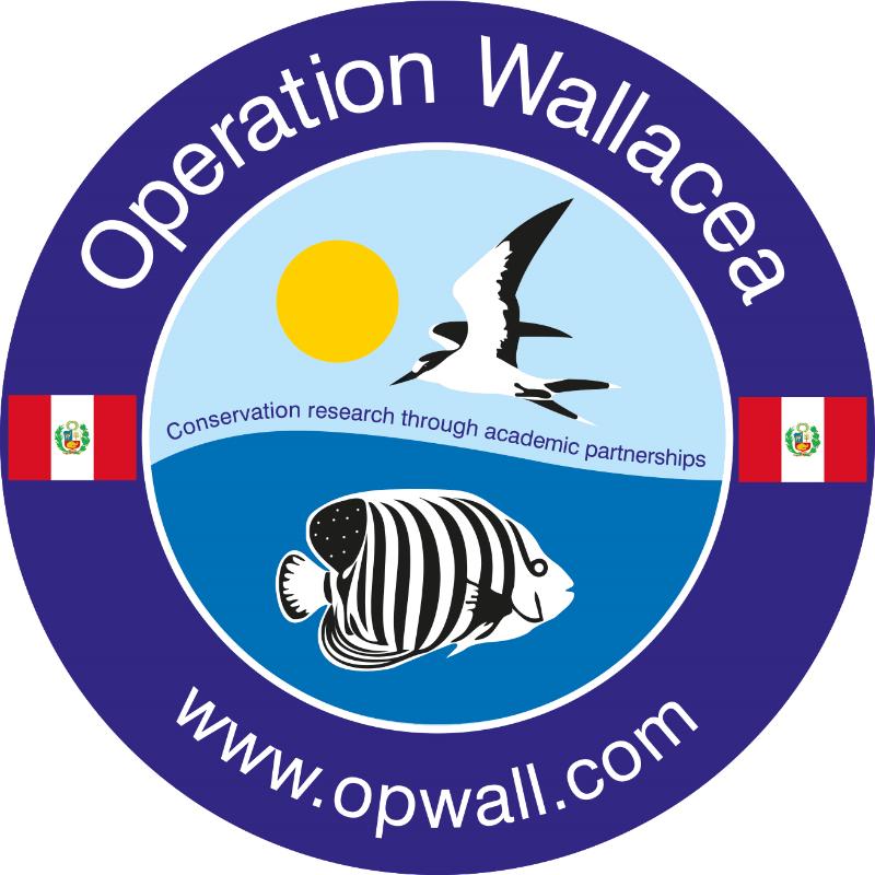 Operation Wallacea  Peru 2017 - Joe Phillips