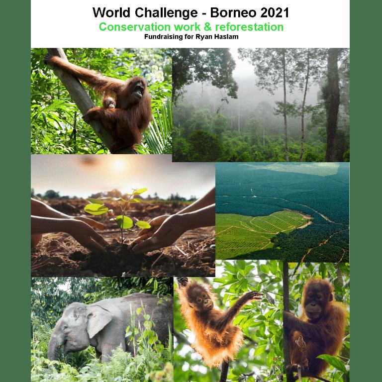 World Challenge Borneo 2021 - Ryan Haslam