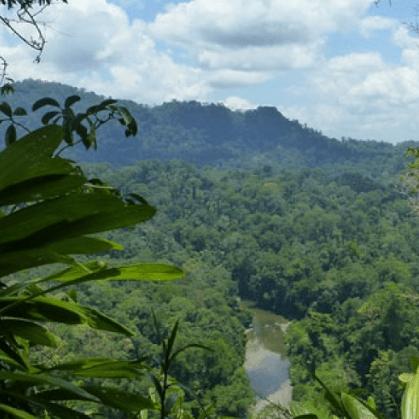 Borneo Expedition Olivia Lindsay