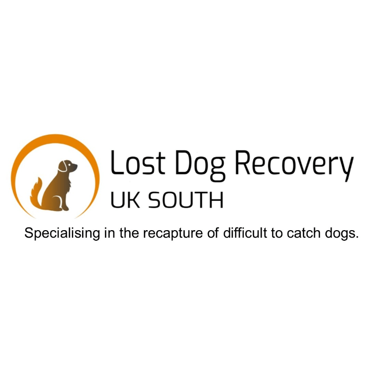 LOST DOG RECOVERY UK SOUTH