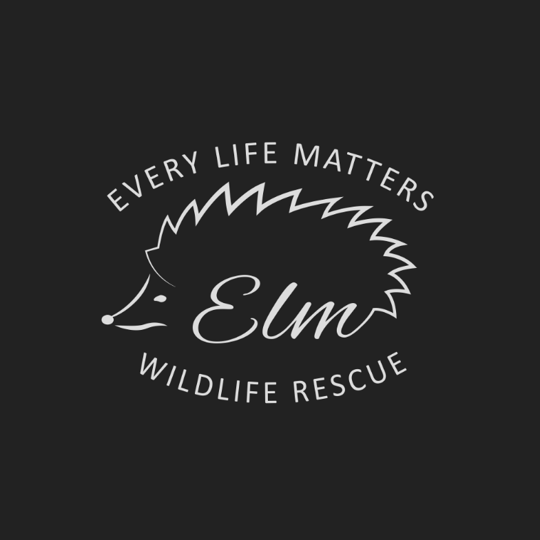 ELM Wildlife