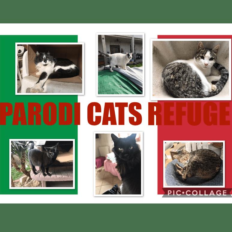 Parodi Cat's Refuge
